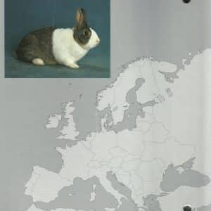 Europa Standard 2012