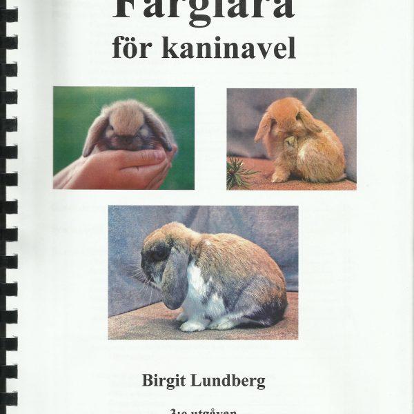 Färglära för kaninavel